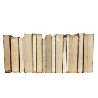 Deconstructed Antique Books, S/15