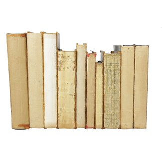 Deconstructed Antique Books S/10