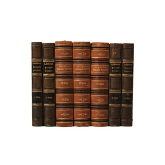 Danish Leather-Bound Books S/7