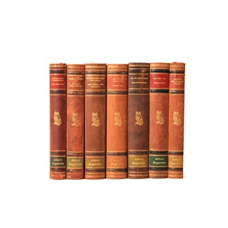 Scandinavian Leather-Bound Books S/7