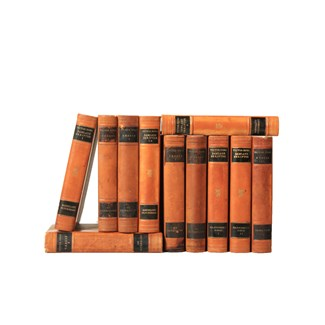 Scandinavian Leather-Bound Books S/11